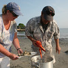 Sue and Frank D'Ambrosio pull out the lobster from the pot during a clam bake on the beach.<br /> Photo by Amy Sweeney.