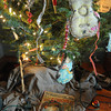 Yuletide Inn Bed and Breakfast. Each of the guestrooms has its own, real Christmas tree.<br /> Photo by Desi Smith.