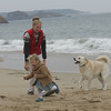 """Manchester: Kelly Lapesa and her daughter Morgan, 2, walk their dog Baxter on Singing Beach.  Lapesa said that she walks her dog on the beach in the winter all the time saying """"It's good exercise for the dog and for us."""" Mary Muckenhoupt/Gloucester Daily Times"""
