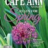 CAM spring15 C1, C2-01,C3,C4.indd