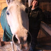 ALAN BURKE/Staff photo<br /> One of Jayne Ginn's two Arabian stallions checks out a visiting photographer.