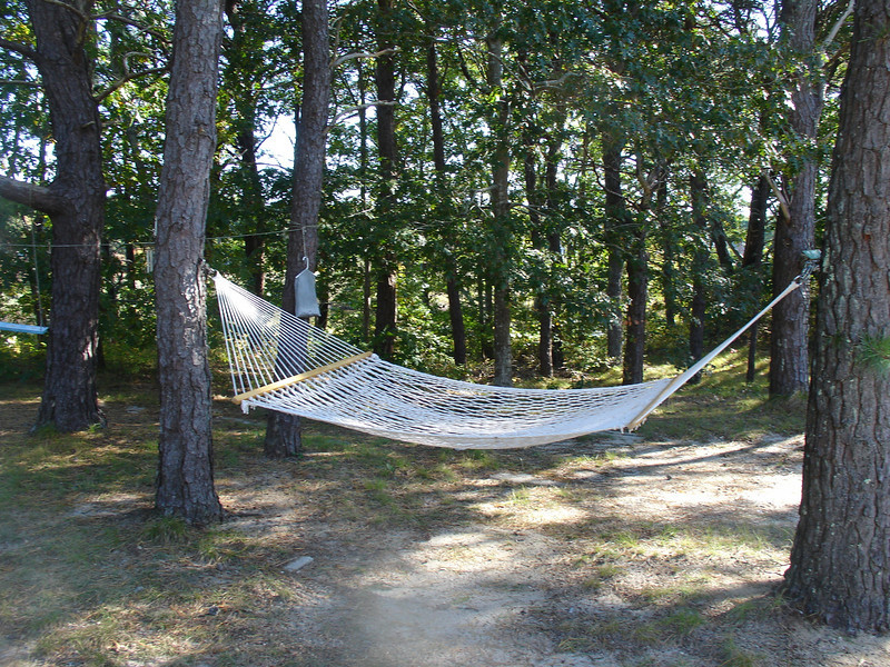 Hammock @ the cottage