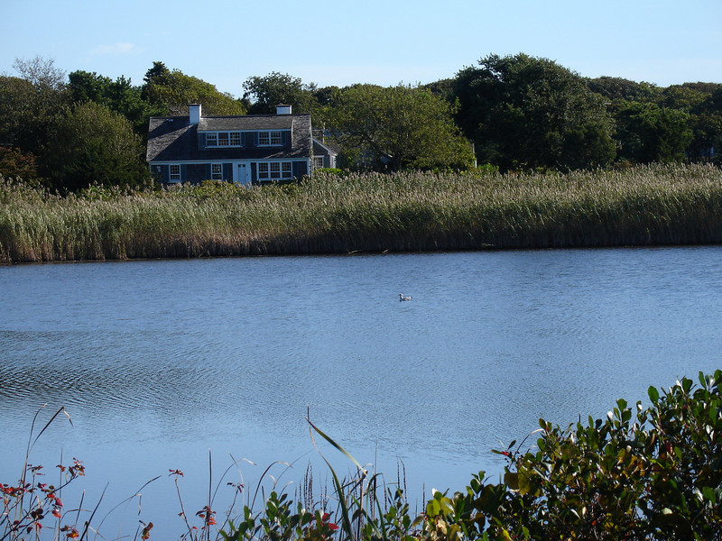 Nice house across the marsh.