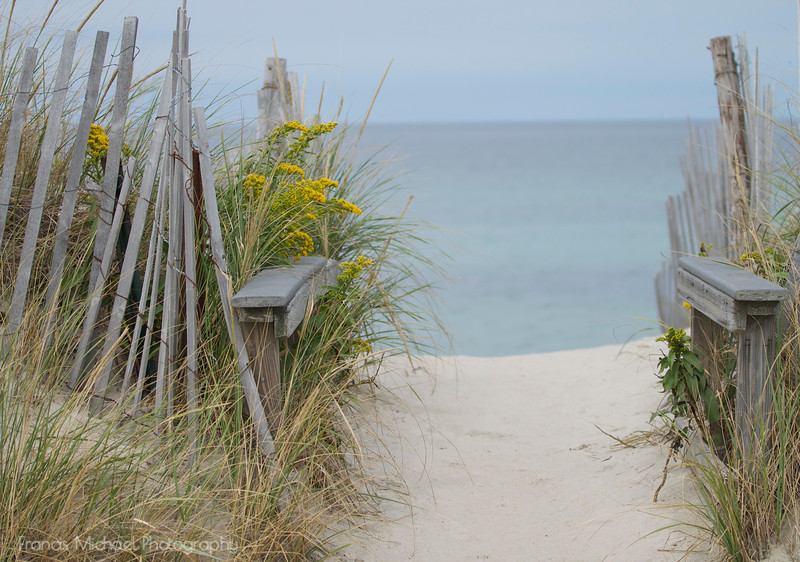 Walkway to Sandy Neck Beach  Barnstable, MA