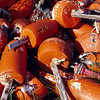 orange floats