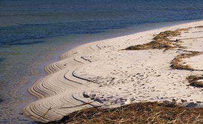 wavy shore Pamet inlet