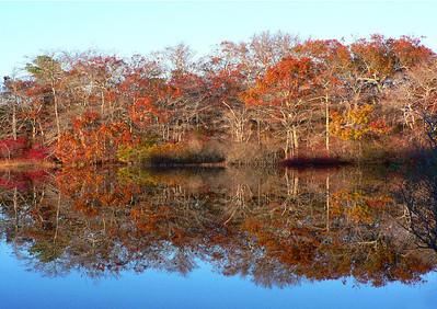 Beech Pond shore autumn 2