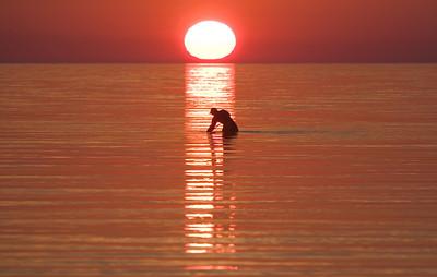 raking for sand eels at sunset