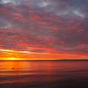 seagull sunset September Provincetown