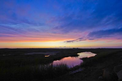 dusky lagoon Pamet Marshes