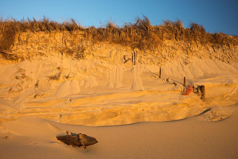 driftwood and eroding cliff The Gut Wellfleet