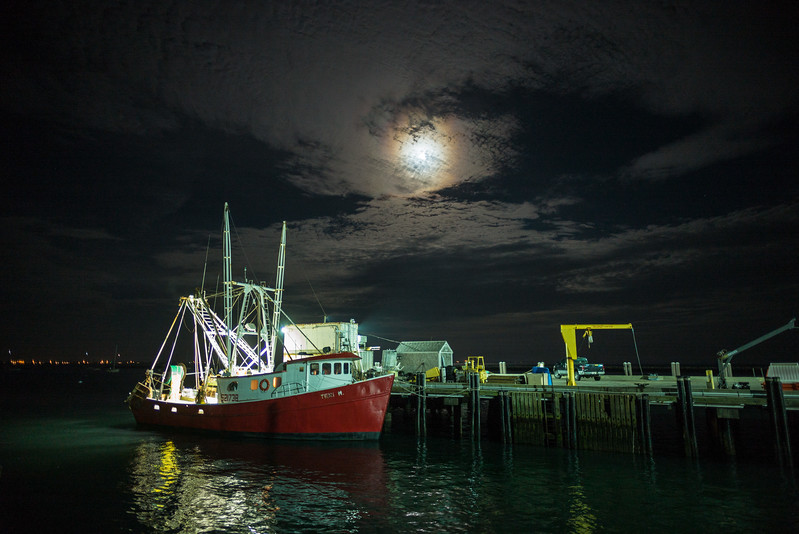 Teri M in the moonlight