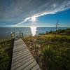 boardwalk flax stalk Cape Cod Bay 10mm
