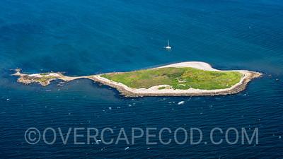 Weepecket Island, Gosnold