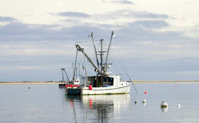 fisherchatham