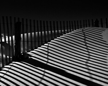 Sand Dunes, Shadows and Fence, Cape Henlopen state Park, Delaware