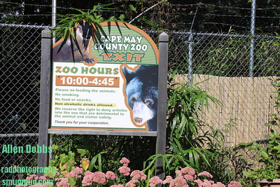 Cape May County Zoo and OC Sept 18 2010 001