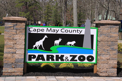 Cape May County Park Zoo April 9 2011