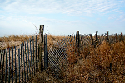 Storm Fence