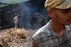 Fabrication du grogue (eau-de-vie locale apparentée au rhum) dans la distillerie de M. Pinto dans la Ribeira de Paul. Ile de Santo Antao/Cap-Vert