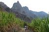 Fillettes sur un chemin au milieu de la canne à sucre dans la Ribeira de Paul. Ile de Santo Antao/Cap-Vert