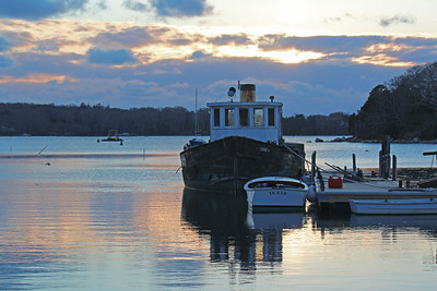 """Ticker"" at Quissett Harbor Sunset"