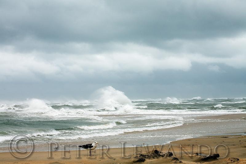 Cape Point Storm