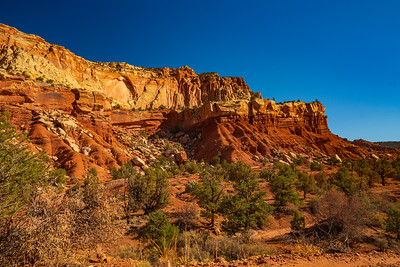 Erosion Carves the Cliffs of Capital Reef