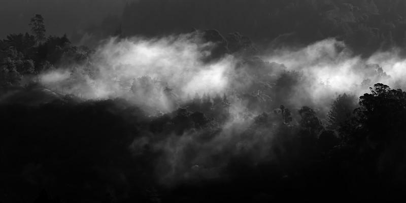 Soquel Hills in fog V3