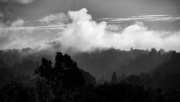Soquel Hills in fog V5