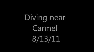 Monterey, diving near Carmel
