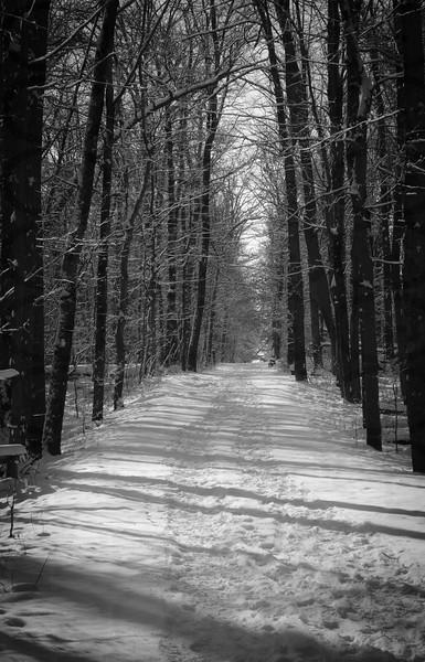 Straight Paths