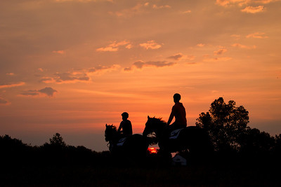 Day 3 AM Ken McPeek's Thoroughbred Training Operation is our morning meeting place.  From a morning work on the grass gallop to some sensational detail and bath shots, it offers an up-close and personal look at the morning routine.