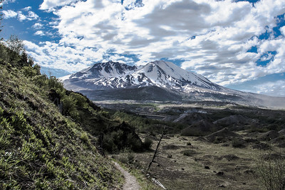 Mt St Helens National Monument - Doundary Trail-7633