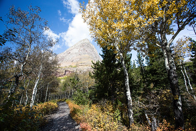 Glacier National Park - Many Glacier Area - Redrock Trail-1002-13