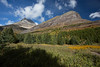 Glacier National Park - Many Glacier Area - Redrock Trail-1059-16