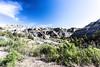 Theodore Roosevelt National Park - North Unit - North Dakota-8953