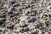 Death Valley National Park - Badwater Salt Flat-