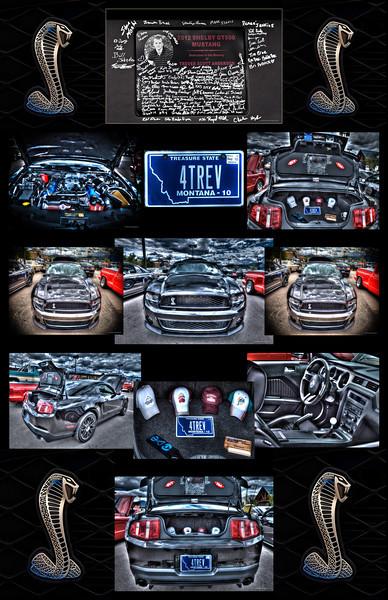 Ford Cobra - Trever - Poster