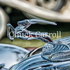 Amelia Island Concours d'Elegance - March 11, 2017 – Chuck Carroll