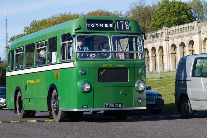 Single-Deck Buses