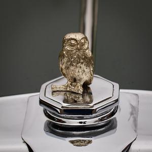 Owl Mascot on a 1949 MG YA Saloon