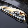 Eagle Mascot on Ford F1 custom pickup truck
