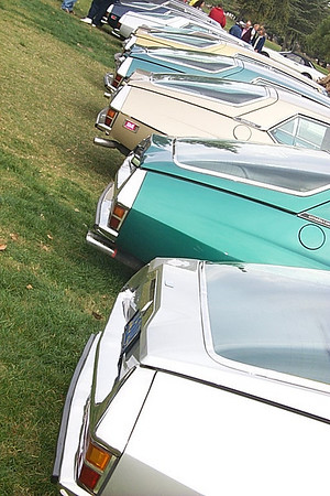 A gaggle of Citroen SM's