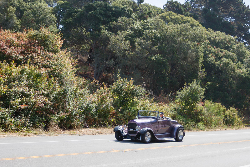 Roadster_Roundup 9_14-153