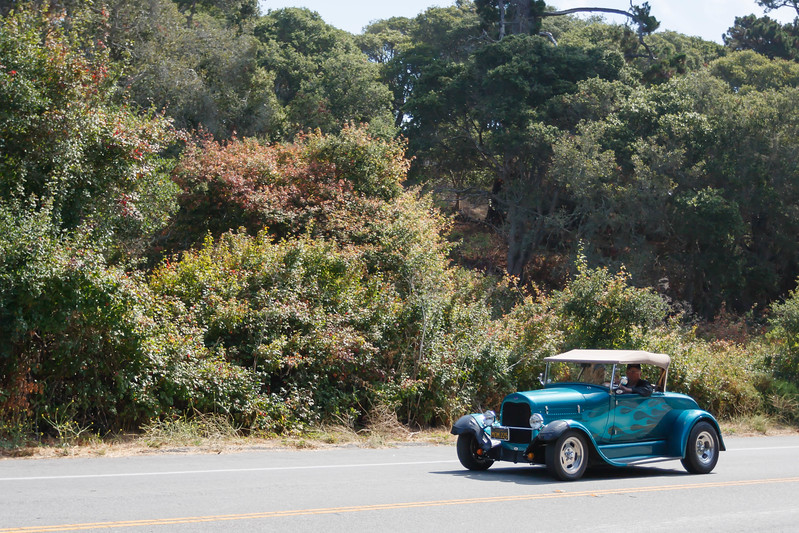 Roadster_Roundup 9_14-124