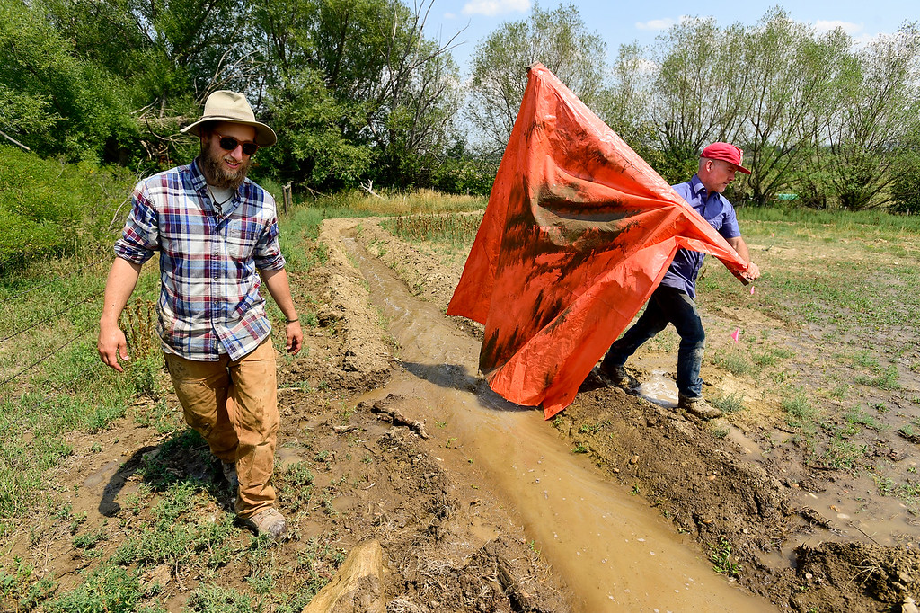 . LONGMONT, CO - AUGUST 7: From left: Farmhand Kris Korba and Farm Manager Marcus McCauley work on irrigation ditches on a property that is being rehabilitated on Aug. 7, 2018. The property is next to the McCauley Family Farm near Longmont and is part of a pilot program for carbon farming. Carbon farming is a practice in which farmers and ranchers aim to be carbon neutral. (Photo by Matthew Jonas/Staff Photographer)