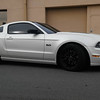 Ford Mustang 5.0 SkinzWrapped in satin pearl white with carbon fiber accents in Sky Lake, FL