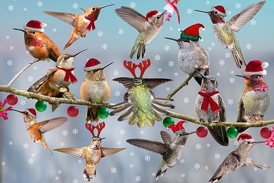 Hummer Christmas