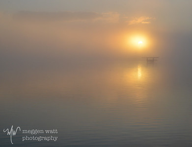 TLR-20131014 - Foggy Sunrise